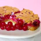 Пирог с красной смородины