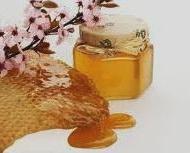 polza-meda-dlya-nashego-organizma-poleznye-svojjstva-meda